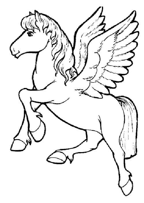 avec-ailes-1