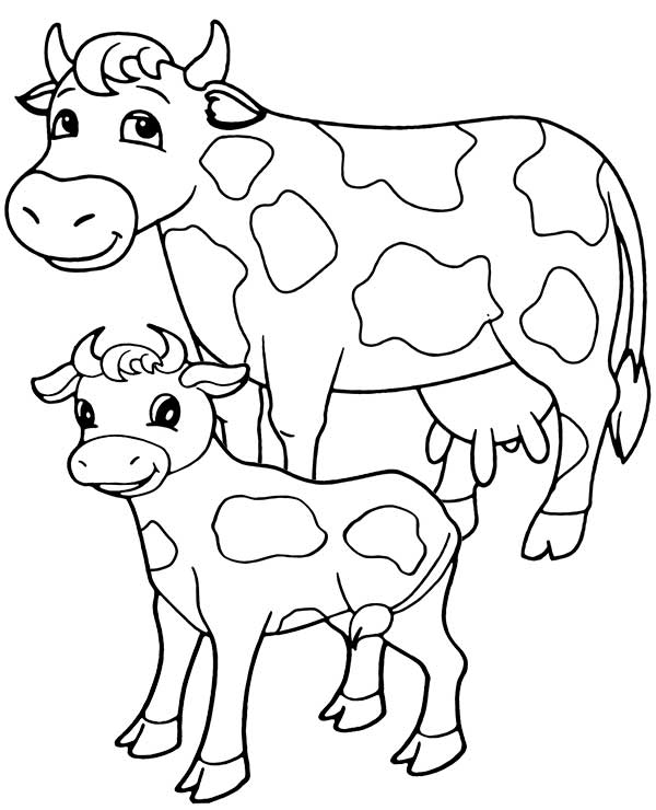 dessins de vaches