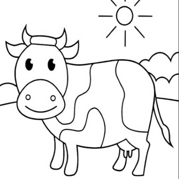 dessins pédagogiques