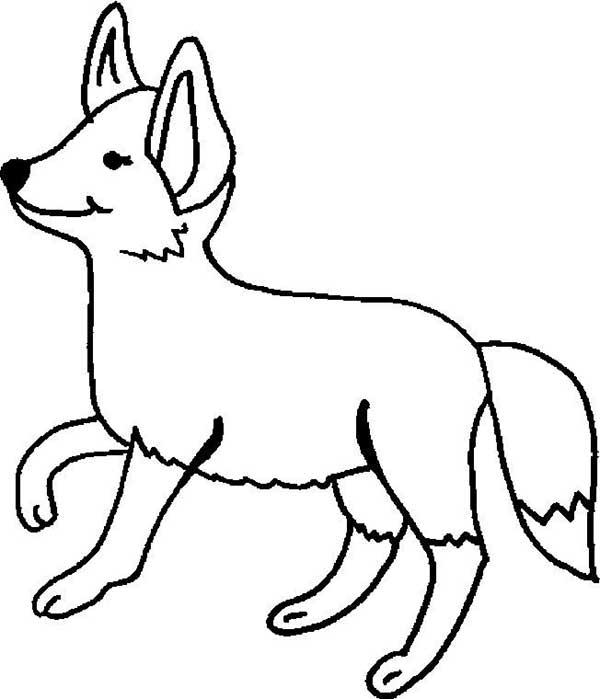 renards coloriages