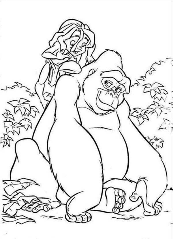 avec grand gorille