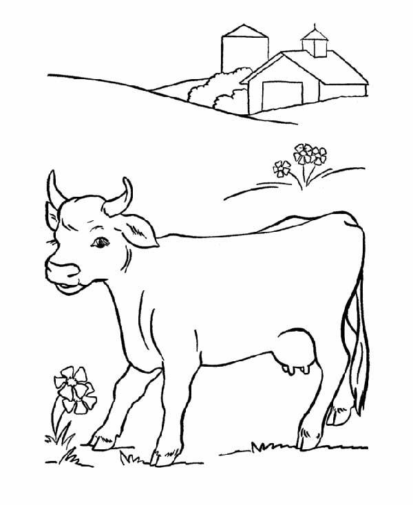 dessins de ferme