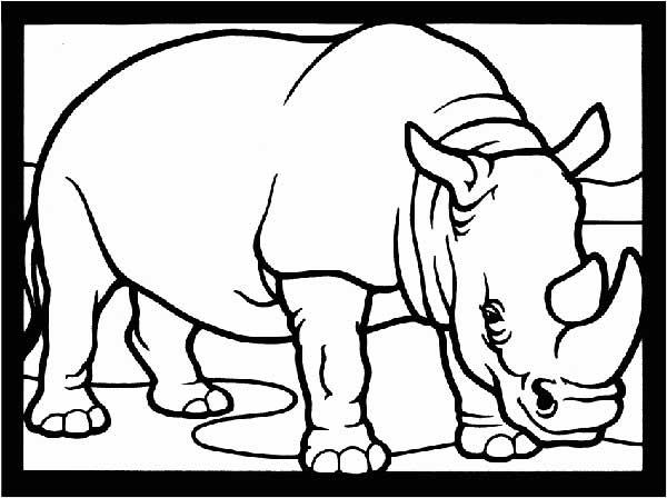 livre de coloriage de rhinocéros