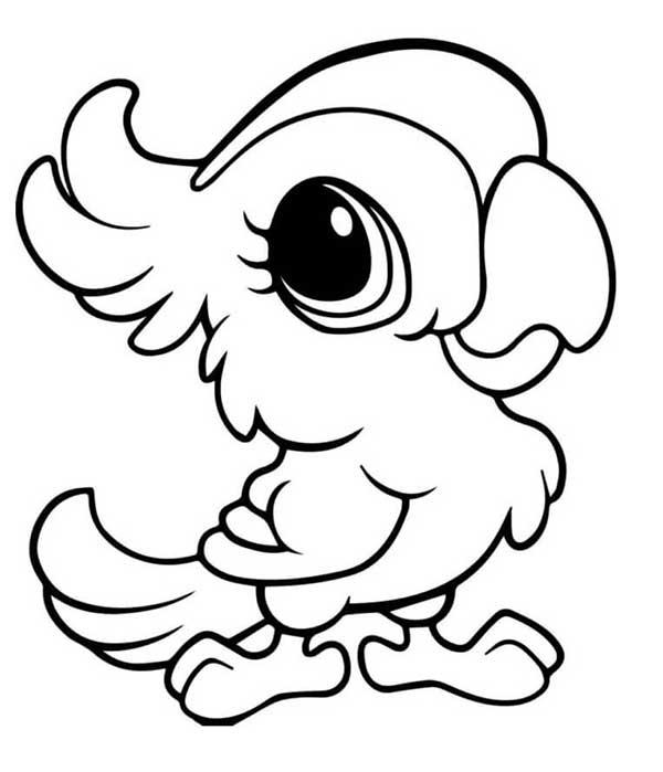 coloriage de perroquet