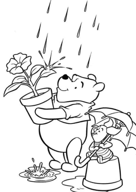 caca avec porcelet sous la pluie