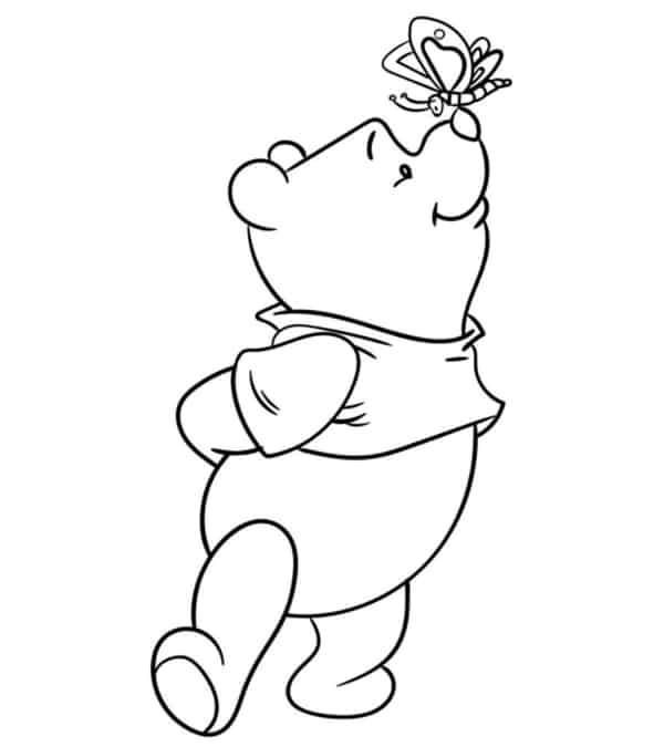 ourson en peluche avec papillon