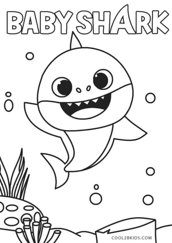 dessin gratuit de bébé requin