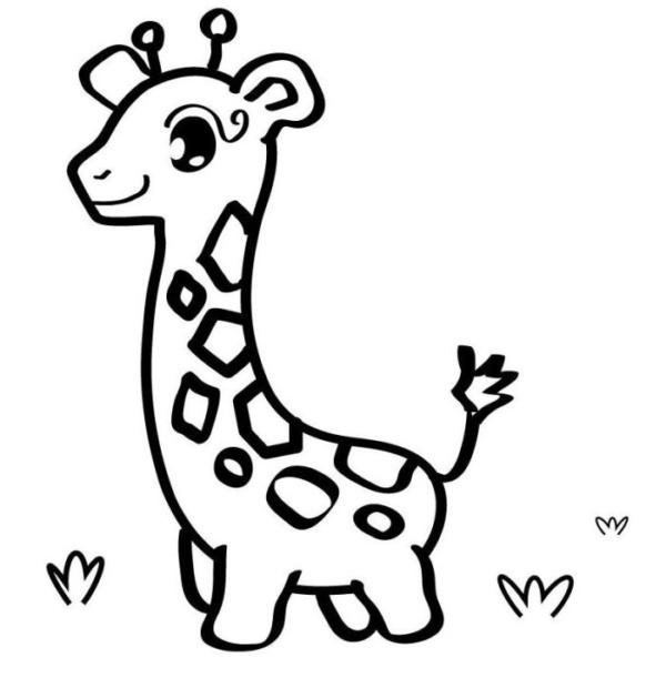 dessin de girafe